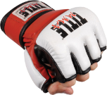 Title Youth MMA Amateur Competition Gloves