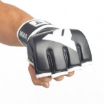 Throwdown Traditional MMA Gloves